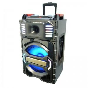 PA аудио система колонка MT-13