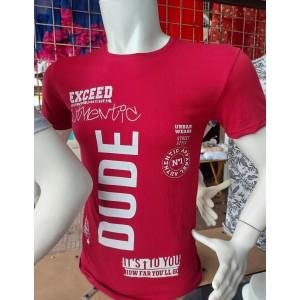 Футболка DUDE (замовлення від 4 шт ростовкой, S-M-L-XL)