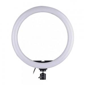 Кольцевая LED лампа (30см)