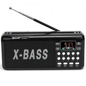 Радіоприймач RX BT204L