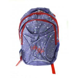 Рюкзак школьный 675