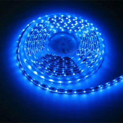 Светодиодная лента SMD 5050 100м Синяя